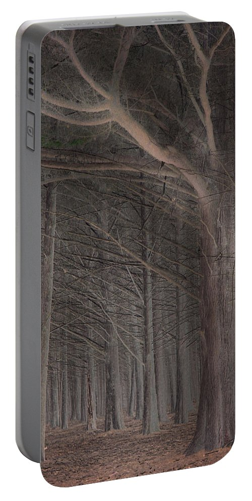 Landscapes Portable Battery Charger featuring the photograph Moss Beach Trees by Karen W Meyer