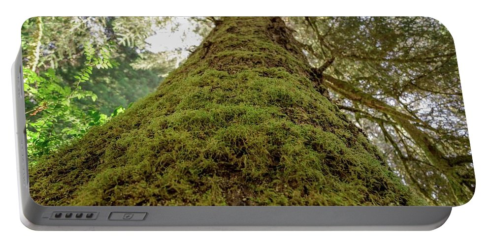 Portable Battery Charger featuring the photograph Moss Up A Tree by Anthony Lindsay
