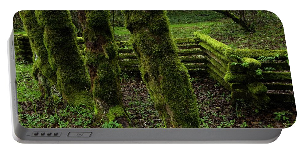 Moss Portable Battery Charger featuring the photograph Mossy Fence by Bob Christopher