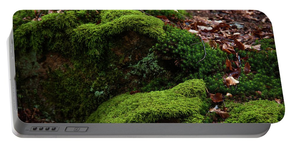 Jenny Rainbow Fine Art Photography Portable Battery Charger featuring the photograph Mossy Rocks In Spring Woods by Jenny Rainbow