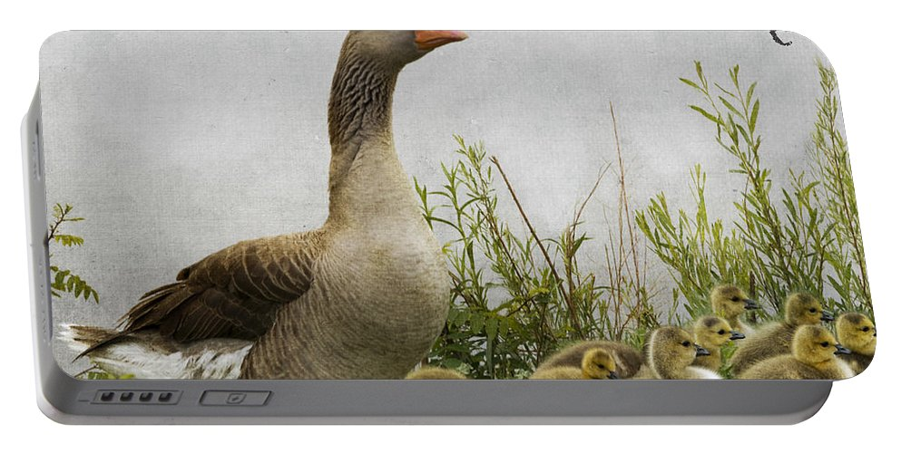 Mother Goose Portable Battery Charger featuring the photograph Mother Goose by Juli Scalzi