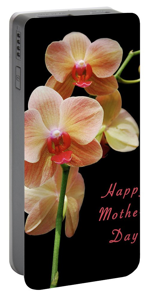 Mother Portable Battery Charger featuring the photograph Mothers Day Card 8 by Michael Peychich