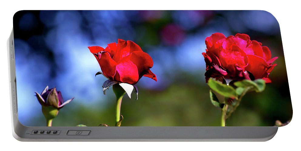 Mother's Day Portable Battery Charger featuring the photograph Mother's Day Roses Blank by Mark Andrew Thomas