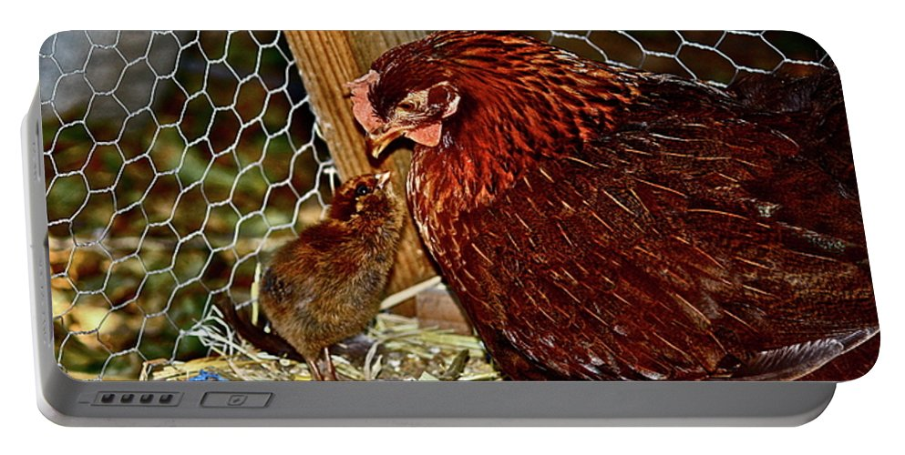 Fowl Portable Battery Charger featuring the photograph Mother's Love by Diana Hatcher