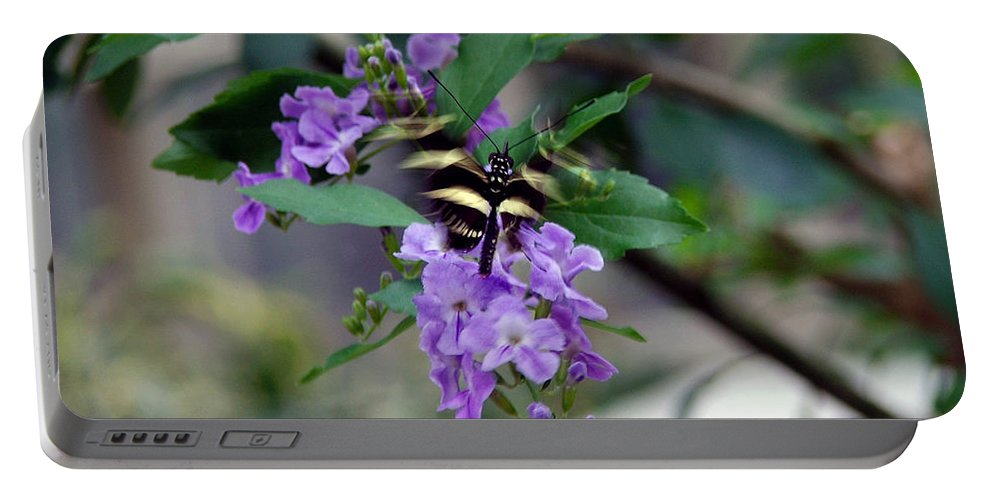 Butterfly Portable Battery Charger featuring the photograph Motion by Robert Meanor
