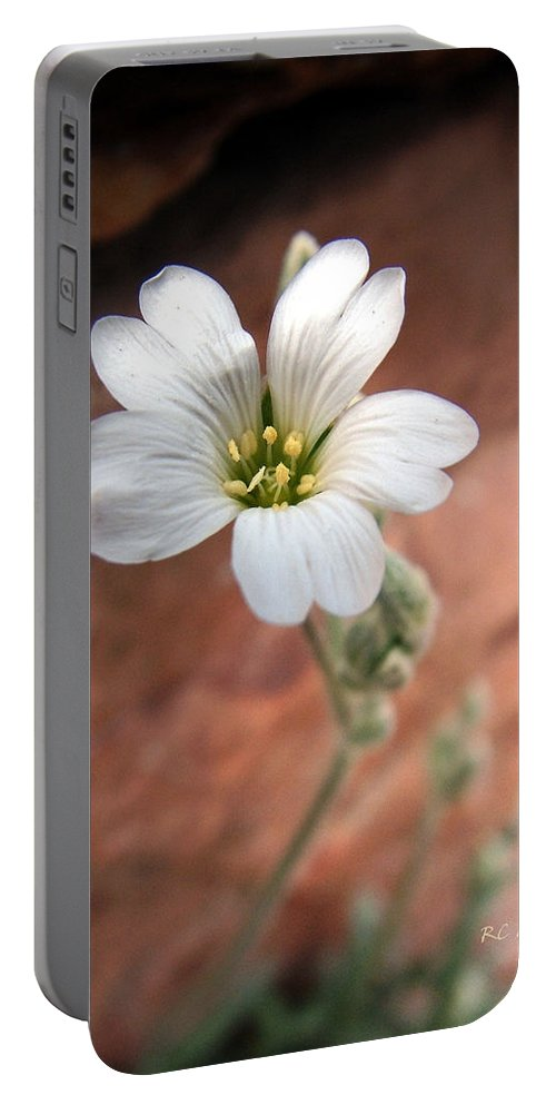 Alpine Portable Battery Charger featuring the photograph Mountain Beauty by RC DeWinter