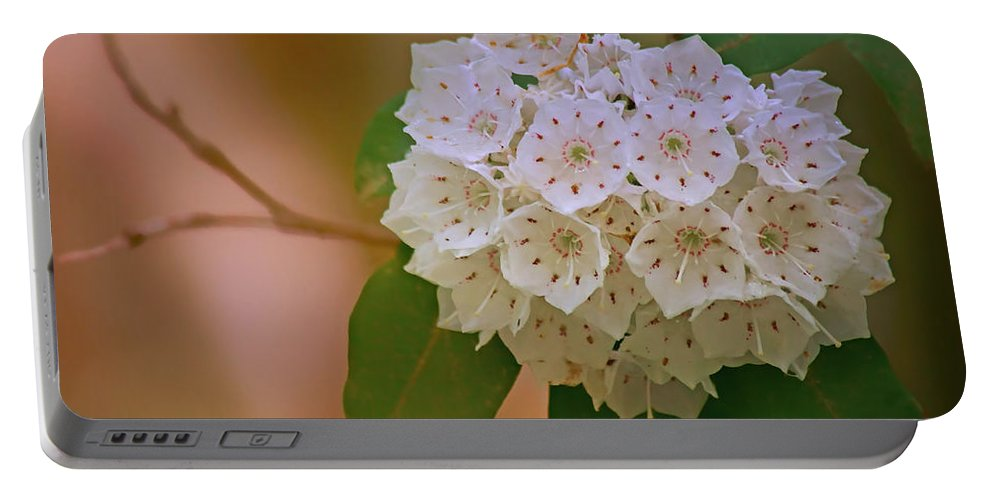 Mountain Laurel Portable Battery Charger featuring the photograph Mountain Laurel by Nikolyn McDonald