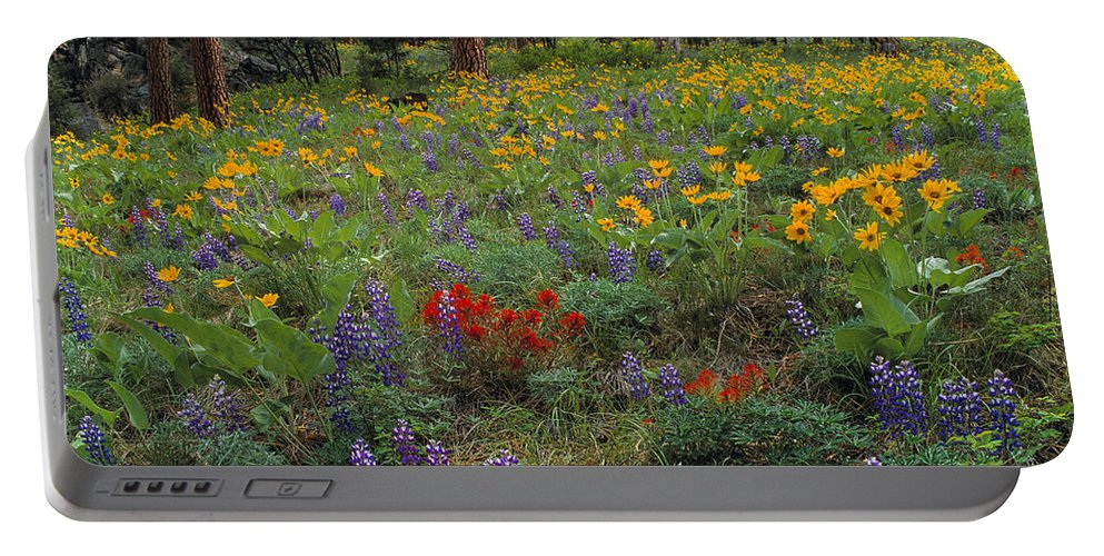 Idaho Scenics Portable Battery Charger featuring the photograph Mountain Wildflowers by Leland D Howard