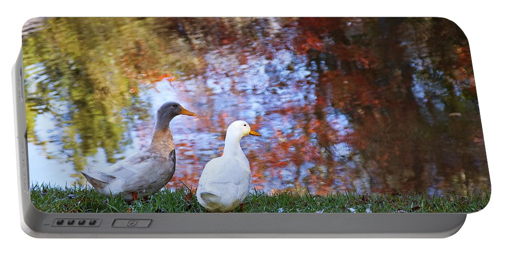 Duck Portable Battery Charger featuring the photograph Mr And Mrs Duck by Amy Jackson