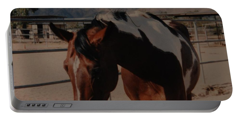 Horse Portable Battery Charger featuring the photograph Mr Ed by Rob Hans