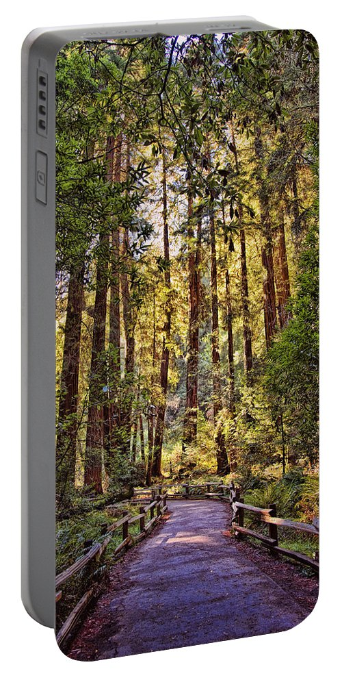 Muir Woods Portable Battery Charger featuring the photograph Muir Woods by Diana Powell
