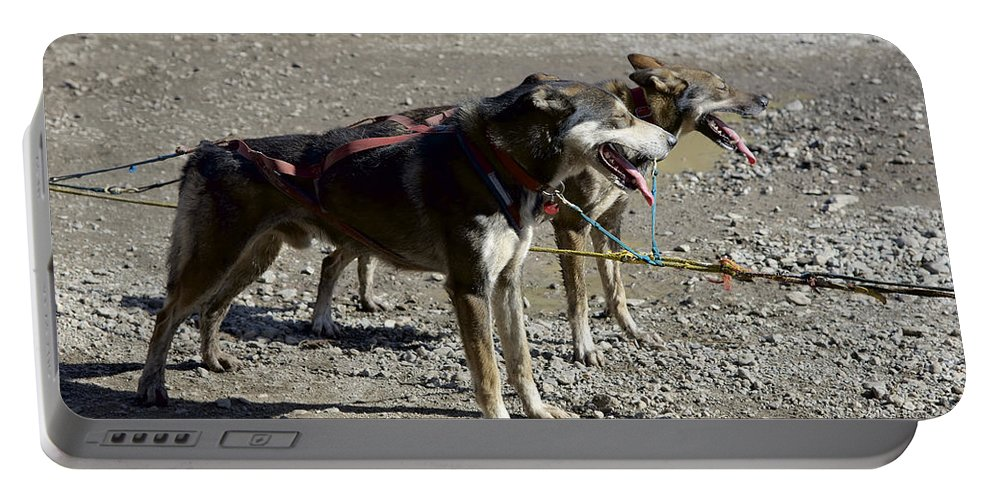 Mushers Portable Battery Charger featuring the photograph Mushers At Caribuo Crossing by Richard J Cassato