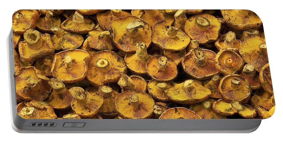Mushroom Portable Battery Charger featuring the photograph Mushrooms In Spain by Steven Sparks