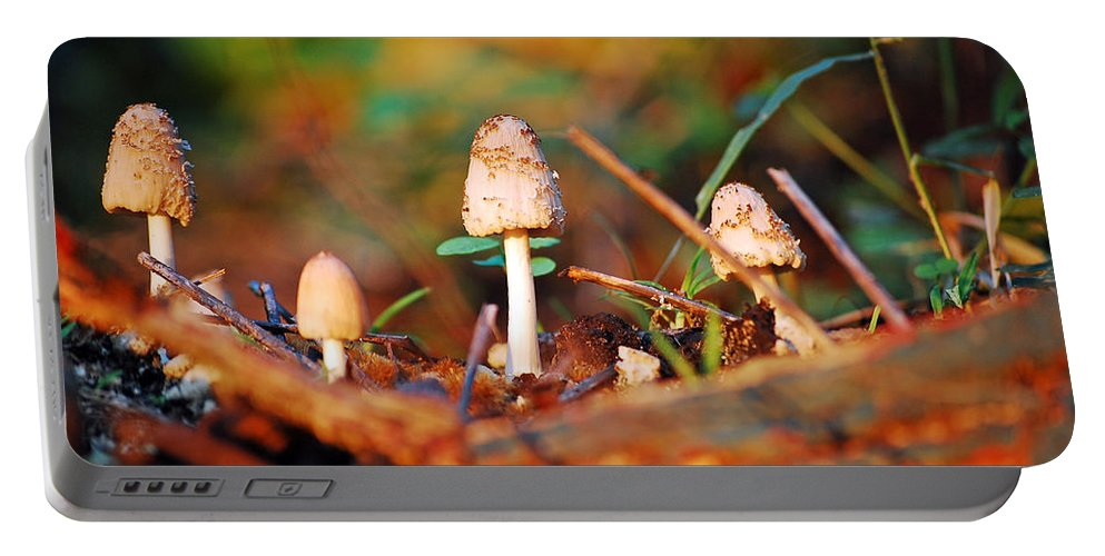 Mushrooms Portable Battery Charger featuring the photograph Mushrooms by Robert Meanor