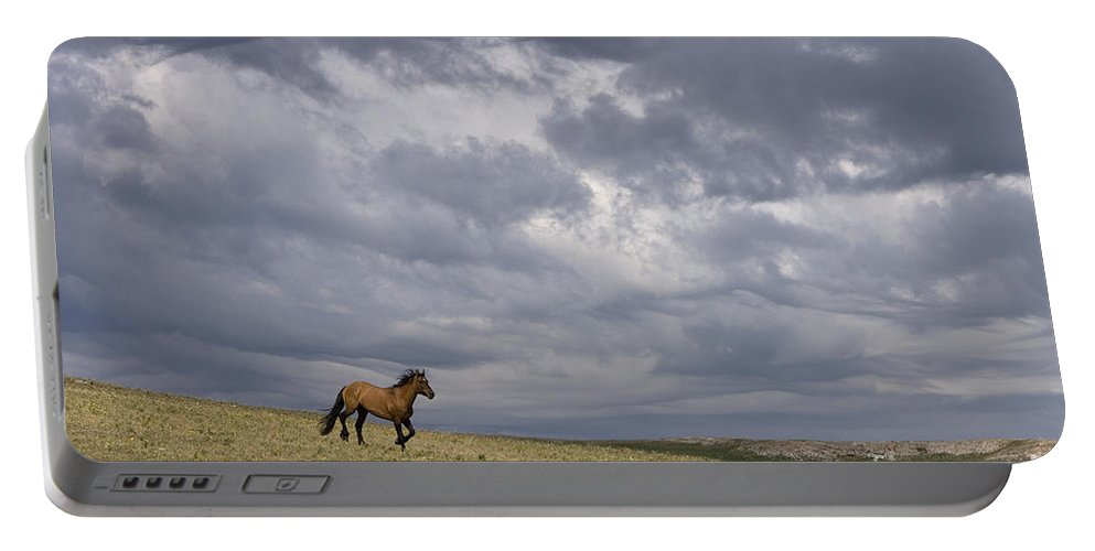 Horse Portable Battery Charger featuring the photograph Mustang And Stormy Sky by Jean-Louis Klein & Marie-Luce Hubert