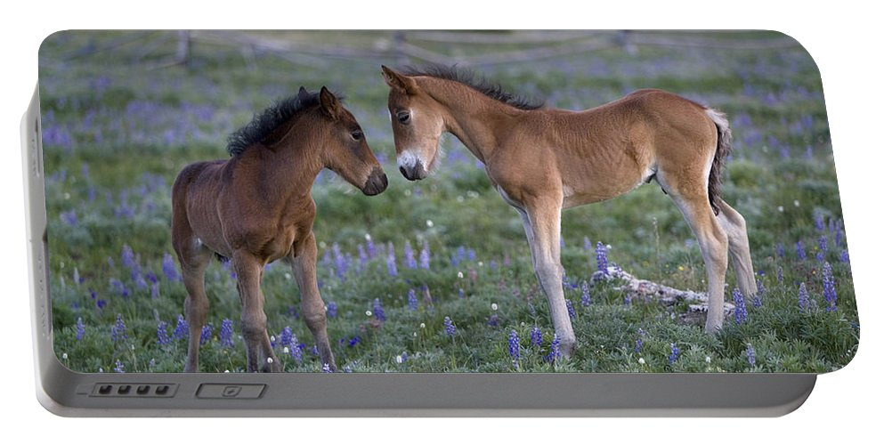 Horse Portable Battery Charger featuring the photograph Mustang Foals by Jean-Louis Klein & Marie-Luce Hubert