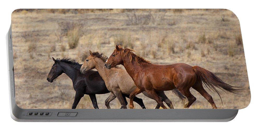 Horses Portable Battery Charger featuring the photograph Mustang Trio by Mike Dawson