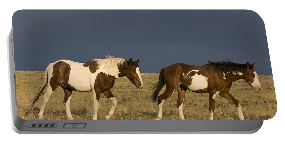 Horse Portable Battery Charger featuring the photograph Mustangs In Nevada by Jean-Louis Klein & Marie-Luce Hubert