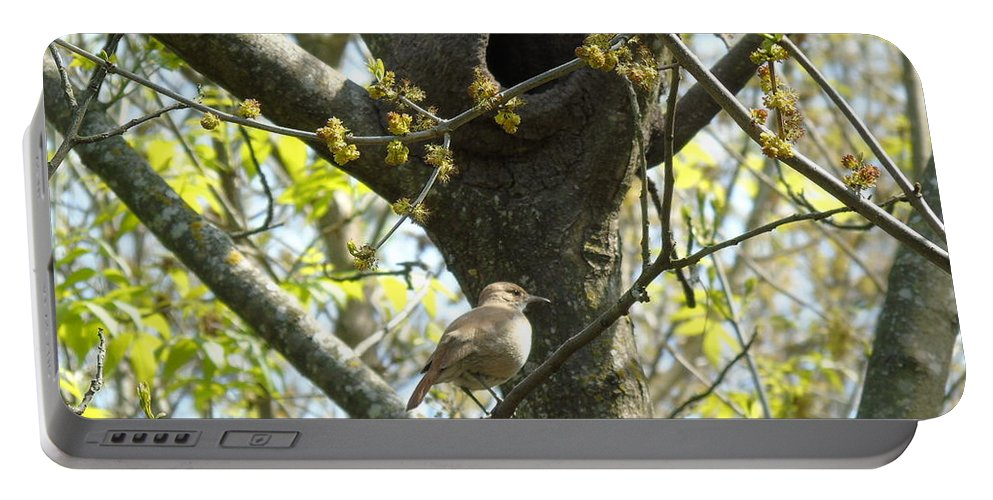 Birds Portable Battery Charger featuring the photograph My Home by Silvana Miroslava Albano