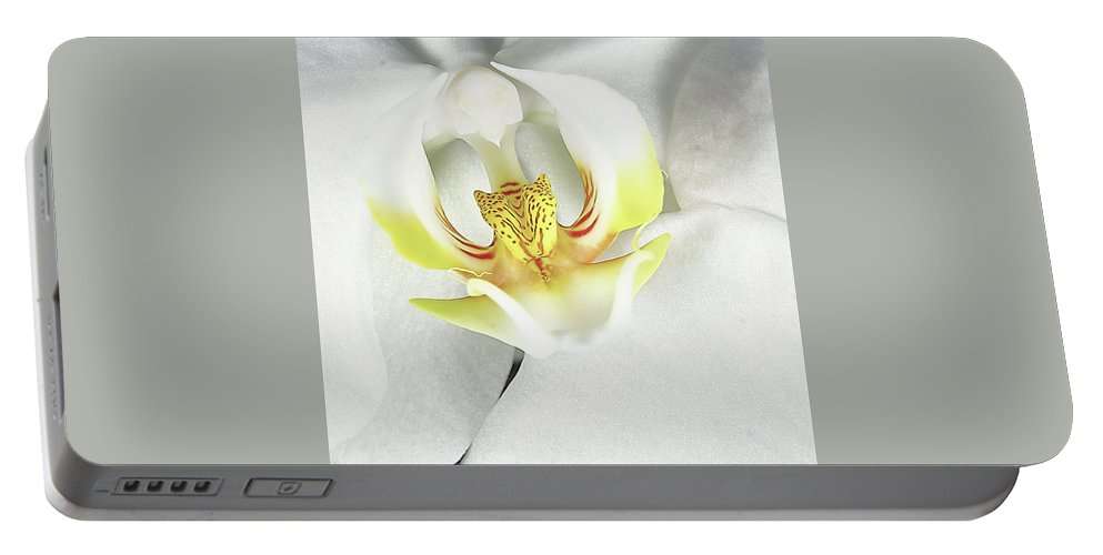 Orchid Portable Battery Charger featuring the photograph My Inner Orchid by David Hayden