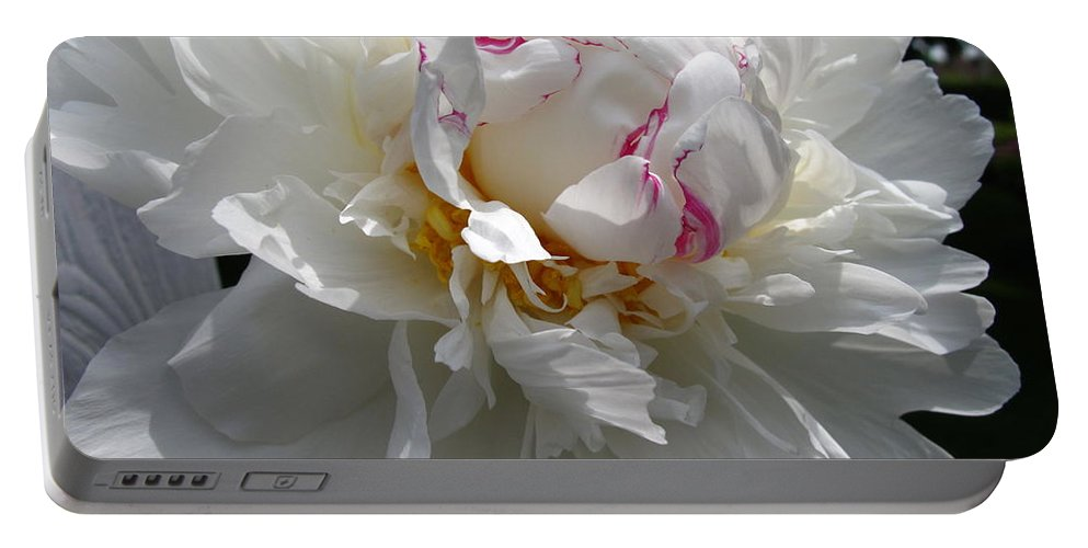 Peony Portable Battery Charger featuring the photograph My Peony by Mary Ellen Mueller Legault