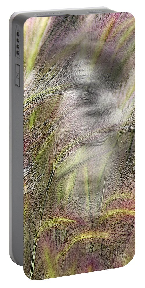 Portable Battery Charger featuring the photograph Mysterious Lady by Marty Koch