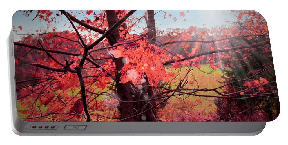 Forest Portable Battery Charger featuring the photograph Mystic Day by Mark Ashkenazi