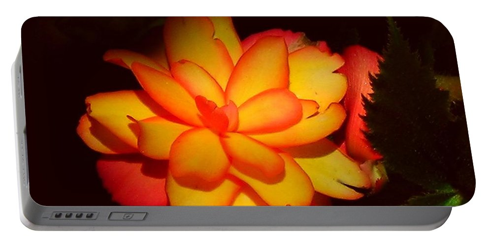 Flower Portable Battery Charger featuring the photograph Mystic by Juergen Weiss