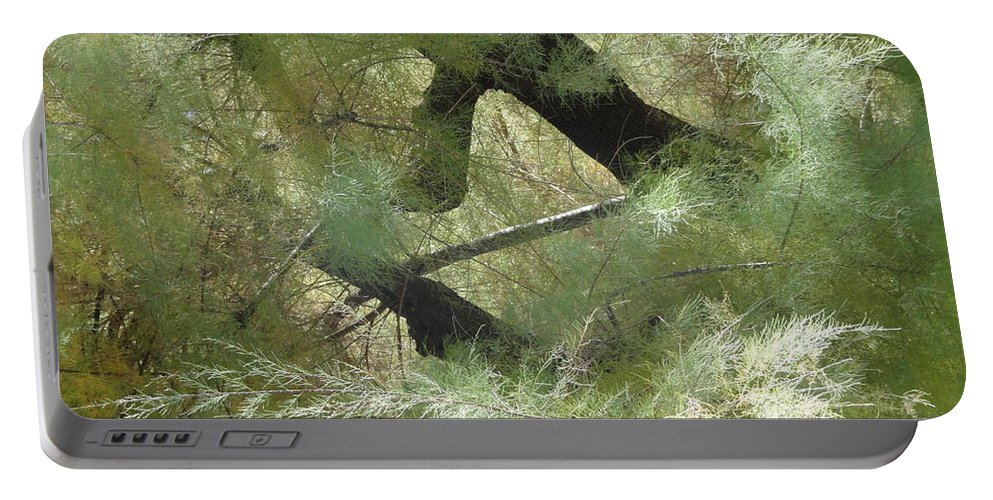 Mystical Portable Battery Charger featuring the photograph Mystical Tree by Christian Rutz