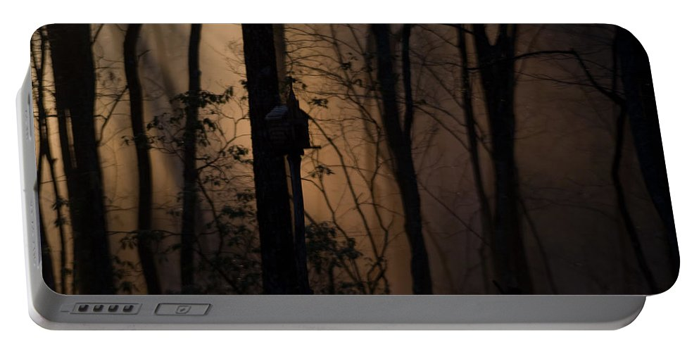 Fog Portable Battery Charger featuring the photograph Mystical Woods by Douglas Barnett