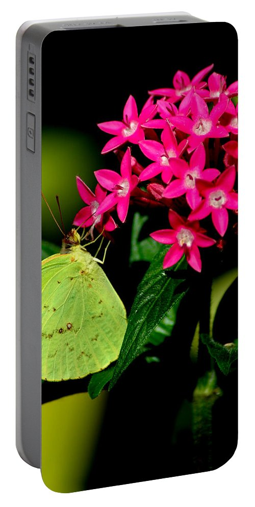 Yellow Portable Battery Charger featuring the photograph Mystical World 3 by David Weeks
