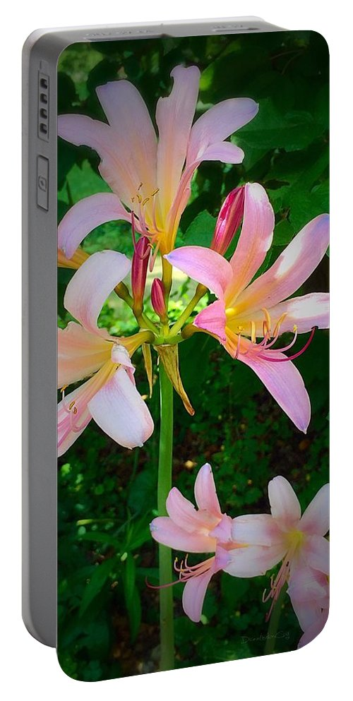 Naked Ladies Portable Battery Charger featuring the photograph Naked Ladies Really by Diane Lindon Coy