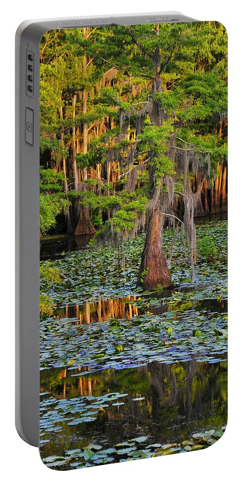 Bog Portable Battery Charger featuring the photograph Naked by Skip Hunt