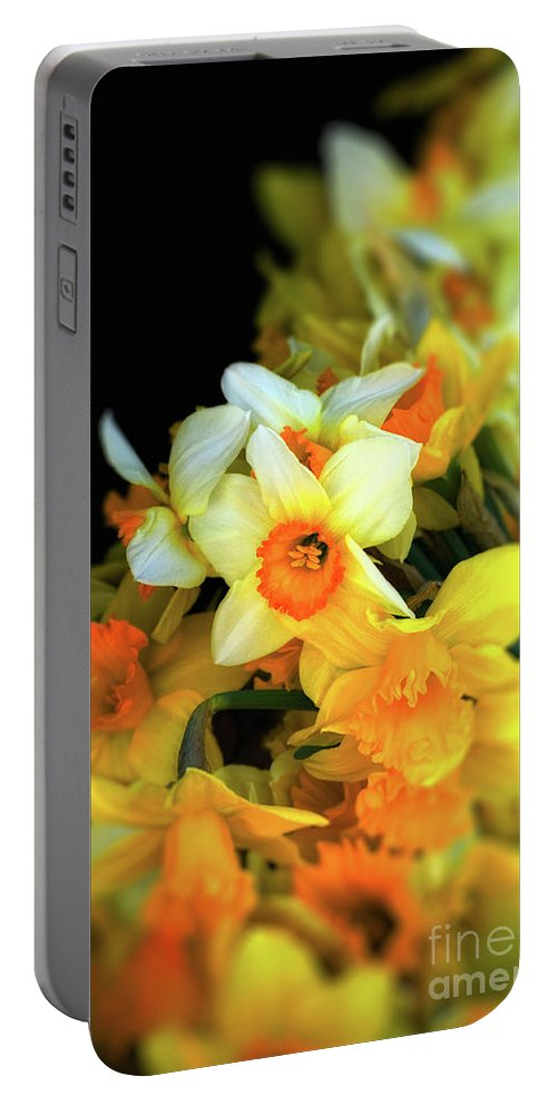 Narcissi Portable Battery Charger featuring the photograph Narcissi by Silvia Ganora