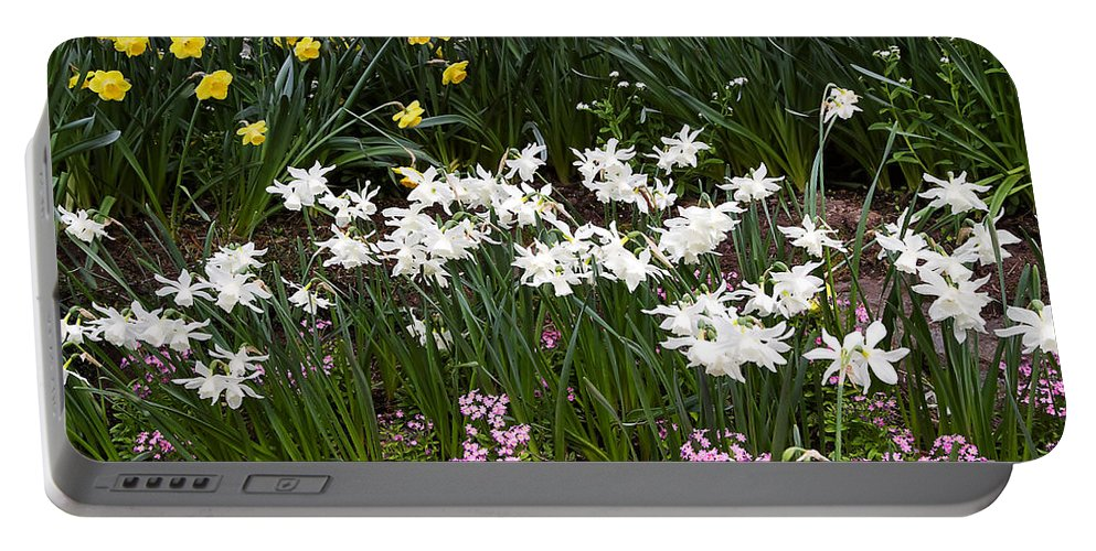 Flower Portable Battery Charger featuring the photograph Narcissus And Daffodils In A Spring Flowerbed by Louise Heusinkveld