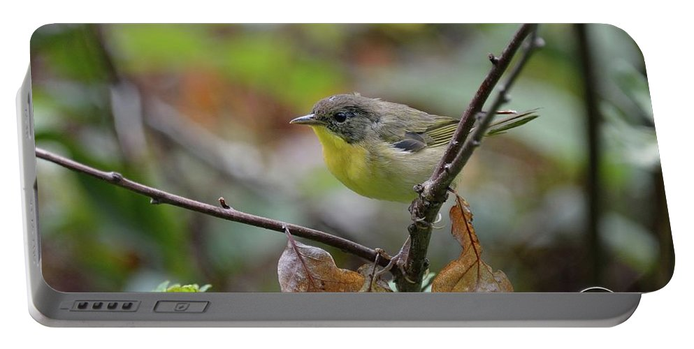 Outdoor Portable Battery Charger featuring the photograph Nashville Warbler by David Porteus