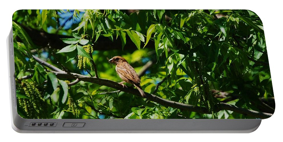 Bird Portable Battery Charger featuring the photograph Natural Insect Repellant by Eric Liller