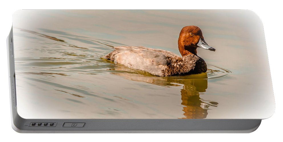 Pond Portable Battery Charger featuring the photograph Natural Redhead by Leticia Latocki