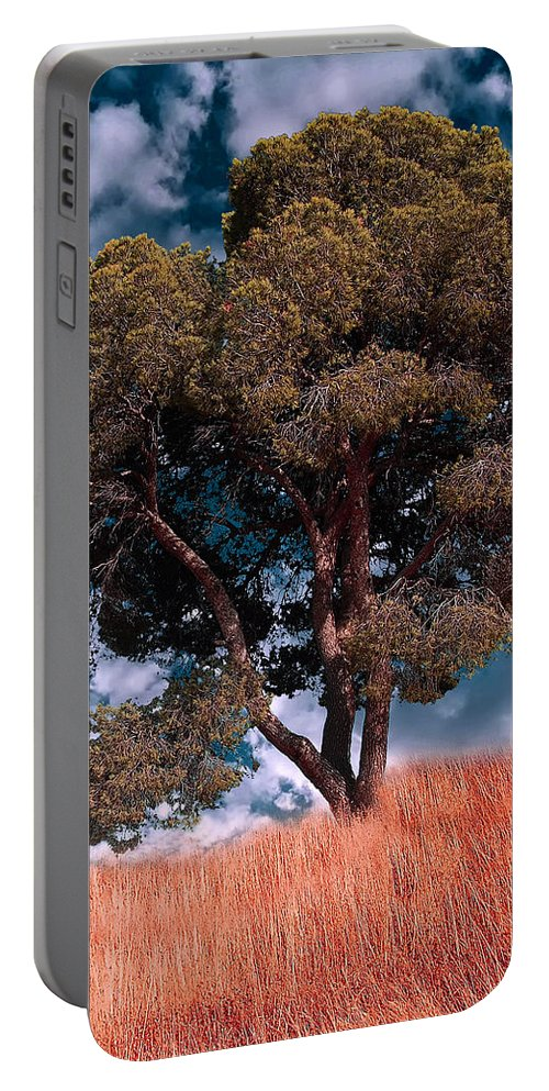 Photograph Portable Battery Charger featuring the photograph Nature - Green Tree by Munir Alawi