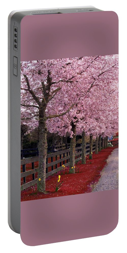 Pink Portable Battery Charger featuring the photograph Nature - Pink Trees by Munir Alawi
