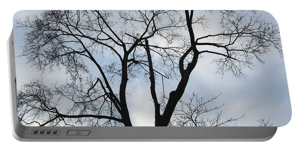 Nature Portable Battery Charger featuring the photograph Nature - Tree in Toronto by Munir Alawi