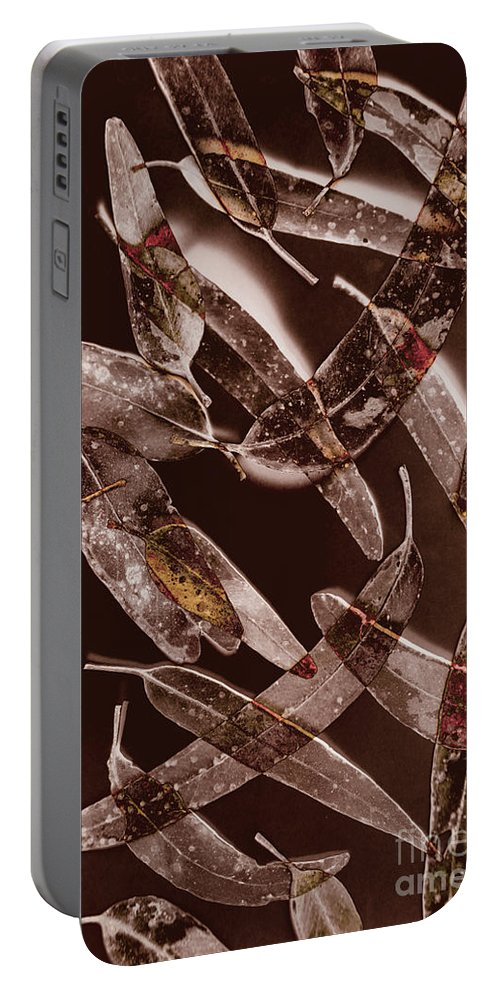 Leaf Portable Battery Charger featuring the photograph Nature In Design by Jorgo Photography - Wall Art Gallery