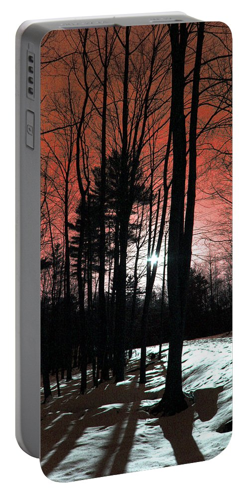 Nature Portable Battery Charger featuring the photograph Nature Of Wood by Mark Ashkenazi
