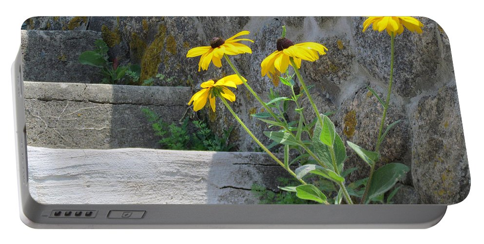 Flowers Portable Battery Charger featuring the photograph Nature Steps It Up by Lori Pessin Lafargue