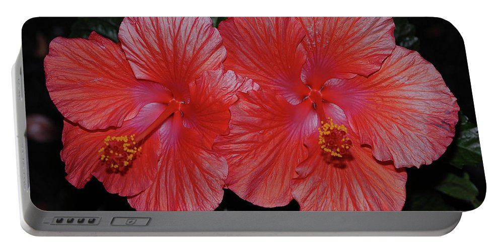 Hibiscus Portable Battery Charger featuring the digital art Nature Untouched by DigiArt Diaries by Vicky B Fuller