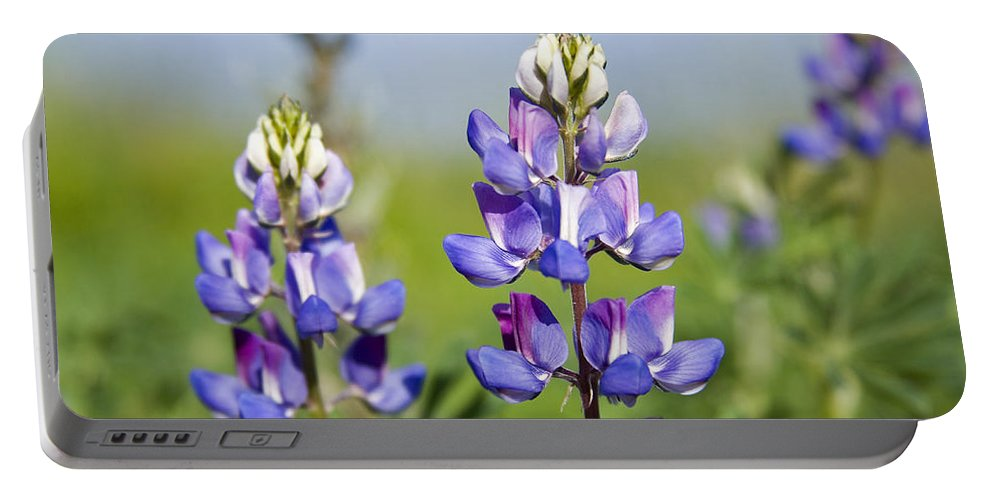 Flowers Portable Battery Charger featuring the photograph Natures Candy by Kelley King