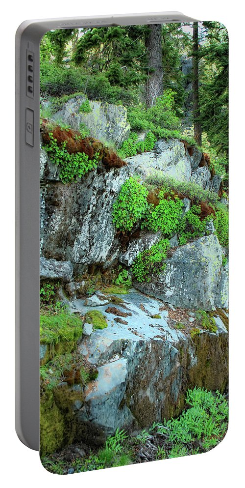 Nature Portable Battery Charger featuring the photograph Nature's Collage by Donna Blackhall