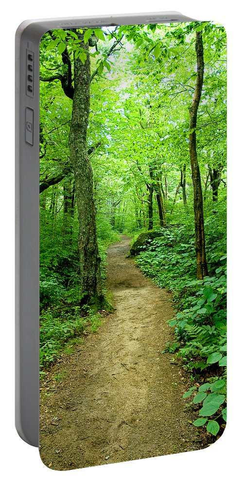 Trees Portable Battery Charger featuring the photograph Nature's Path by Greg Fortier