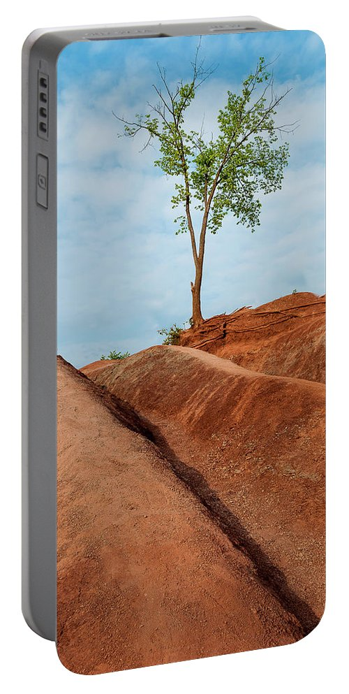 Landscape Portable Battery Charger featuring the photograph Nature's Survival - 03 by Tariq Soomro