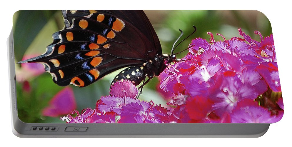 Butterfly Portable Battery Charger featuring the digital art Nectar Of Pink Passion by DigiArt Diaries by Vicky B Fuller